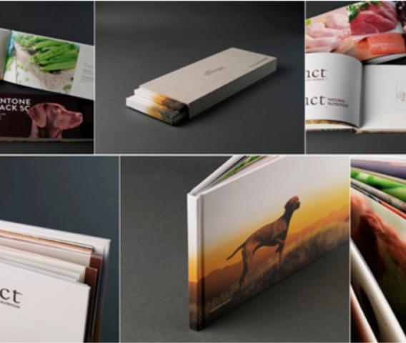 Em busca do brand book perfeito: inspiração e exemplos